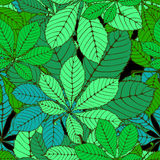 Chestnut leaf. Seamless randomly pattern made Isolated colored autumn chestnut leaves .  illustration Royalty Free Stock Image