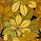 Chestnut leaf. Seamless randomly pattern made Isolated colored autumn chestnut leaves .  illustration Stock Photography