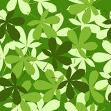 Leaves Royalty Free Stock Images