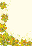Chestnut leaves card. Or background Stock Photo