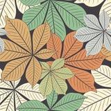 Chestnut leaves Stock Images