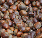 Chestnut at market Stock Images