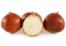 Chestnut (maroni). Three whole chestnut and one cuts in half. Isolated on white Royalty Free Stock Photos