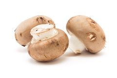 Chestnut Mushrooms Stock Photos
