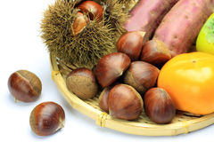 Chestnut and persimmon Royalty Free Stock Photo