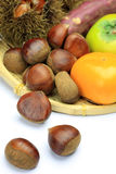 Chestnut and persimmon Stock Images
