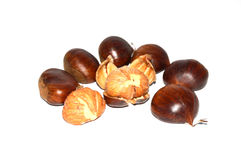 Chestnut pictures. With natural crust and without crust royalty free stock images