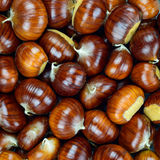 Chestnut raw autumn food, pattern background texture. Royalty Free Stock Photos