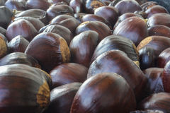 Chestnut. The seed of the tree chestnut, it is edible boiled baked or roasted royalty free stock photography