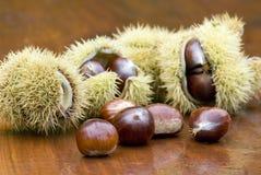 Chestnut still life Royalty Free Stock Photos