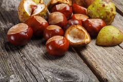 Chestnut on the table. Chestnut on the vintage wooden table royalty free stock photos
