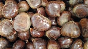 Chestnut texture. In the kitchen stock video footage