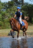 Eventing horse through water complex. A chestnut eventing horse trotting through water complex with female Caucasian rider Stock Photography
