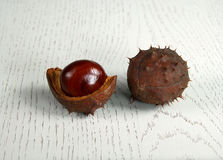 Chestnut on wooden substrate. The core of the fruit chestnut on wooden substrate Stock Photography