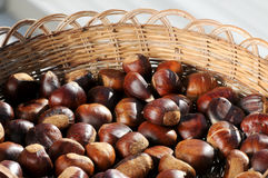 Chestnuts. Framed in a traditional basket stock photography