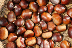 Chestnuts. Framed in a traditional basket royalty free stock photos