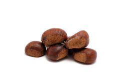Chestnuts. The fruits of the autumn Royalty Free Stock Image