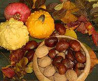Chestnuts. Walnuts,pumpkins and pomegranate Royalty Free Stock Photography