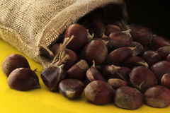 Chestnuts. A bag of chestnuts in yellow Stock Photo