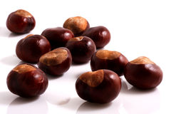 Chestnuts. Composition of chestnuts. Close Up Royalty Free Stock Photos