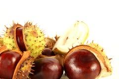 Chestnuts Stock Photos