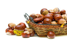 Chestnuts. Closeup on white background Stock Photos