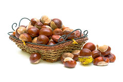 Chestnuts. Closeup on white background Royalty Free Stock Images