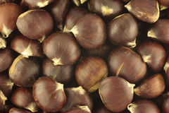 Chestnuts. Close up of a pile of chestnuts Royalty Free Stock Images