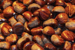 Chestnuts. Background of many brown chestnuts stock photos