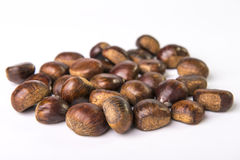 Chestnuts. Iraw  on white Stock Images