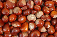 Chestnuts. Background stock photo