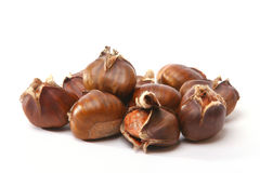 Chestnuts. Isolated on a white background stock photos