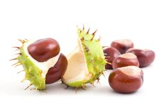 Chestnuts. Isolated on a white background Royalty Free Stock Photography
