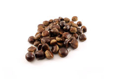 Chestnuts. A bunch of fresh Chestnuts Royalty Free Stock Photo