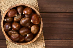 Free Chestnuts Royalty Free Stock Photography - 78022447