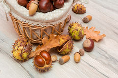 Chestnuts and acorns in a wicker basket. horizontal photo. Mature acorns and chestnuts in a wicker basket close-up. horizontal photo Stock Image