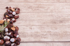 Chestnuts and acorns on wooden backgtound with space for own tex Stock Image