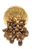 Chestnuts and almonds Stock Images