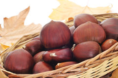 Chestnuts and autumn leaves Royalty Free Stock Photography