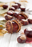 Chestnuts. Autumnal decoration of chestnuts and leaves Stock Photos