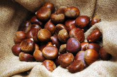 Chestnuts background Stock Photos