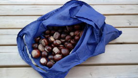 Chestnuts in a bag. A bag of chestnuts on a table Stock Photo