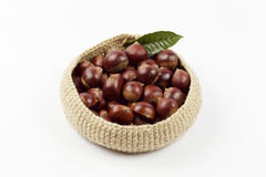Chestnuts in the basket Stock Image