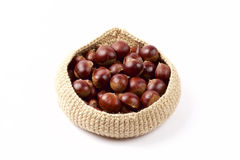 Chestnuts in the basket Royalty Free Stock Image