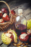 Chestnuts in basket and bottle with tincture Stock Image