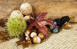Chestnuts and berry fruit Royalty Free Stock Images