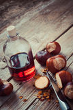 Chestnuts and bottle with healthy tincture Stock Images