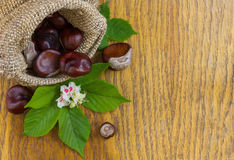 Chestnuts in burlap on wood textured Stock Photos