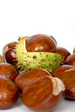 Chestnuts close up isolated Royalty Free Stock Images