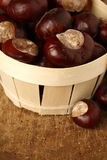 Chestnuts close up Royalty Free Stock Image